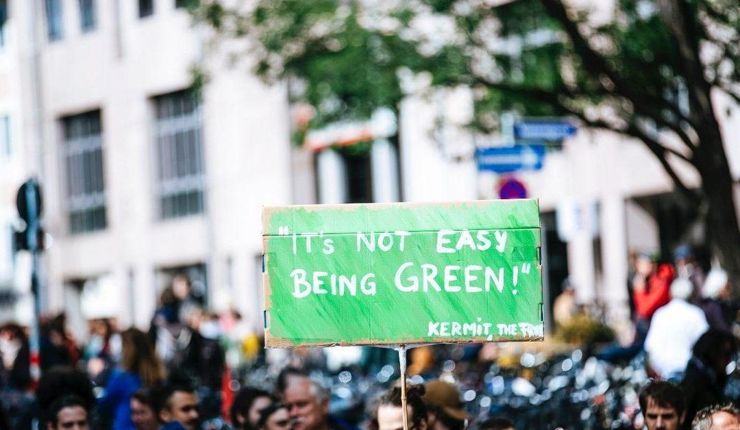 Környezettudatos munkahely 2020-ban: így lesz zöld az iroda
