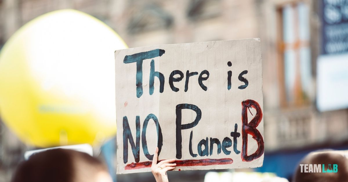 Mit tehetünk a környezetünk védelméért a munkahelyen?